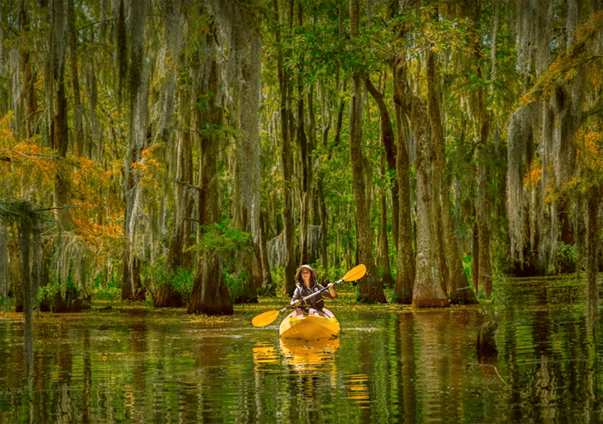 Kayaker in Louisiana Bayou