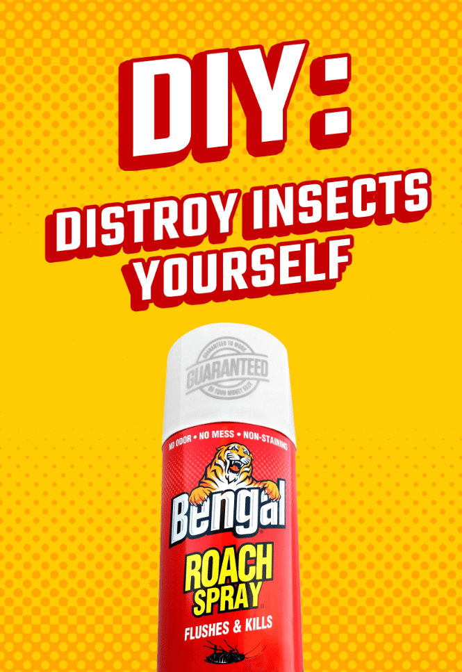 ad featuring a can of bengal roach spray on yellow background and headline