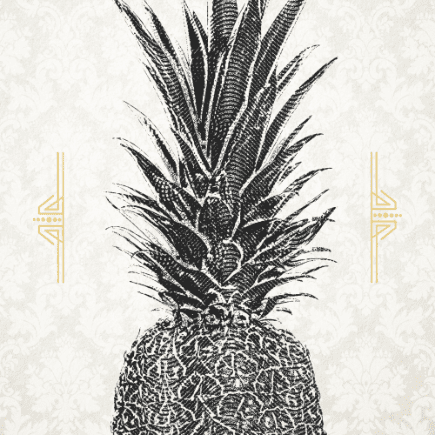 graphic illustration of pineapple