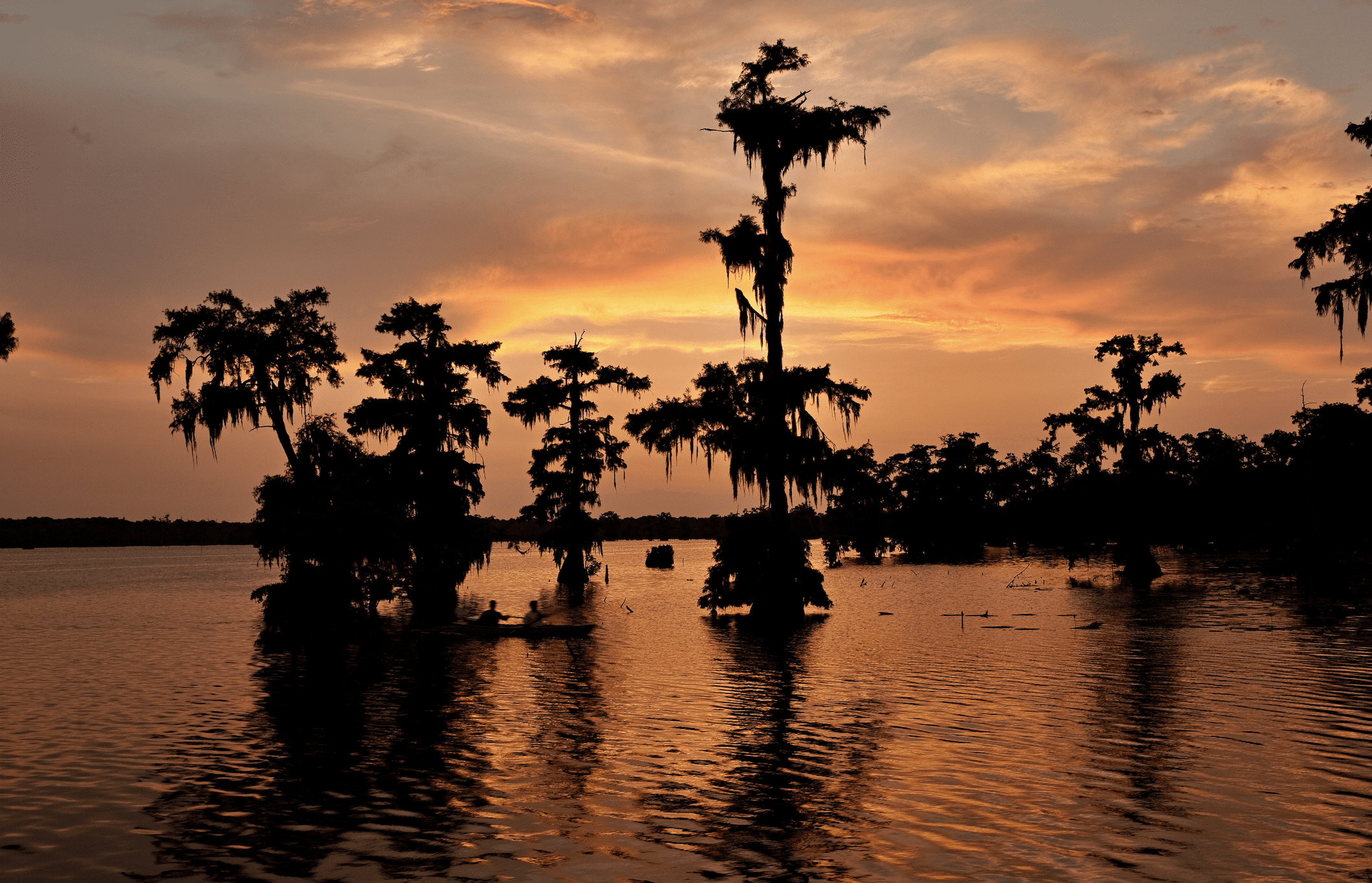 sunset over the bayou